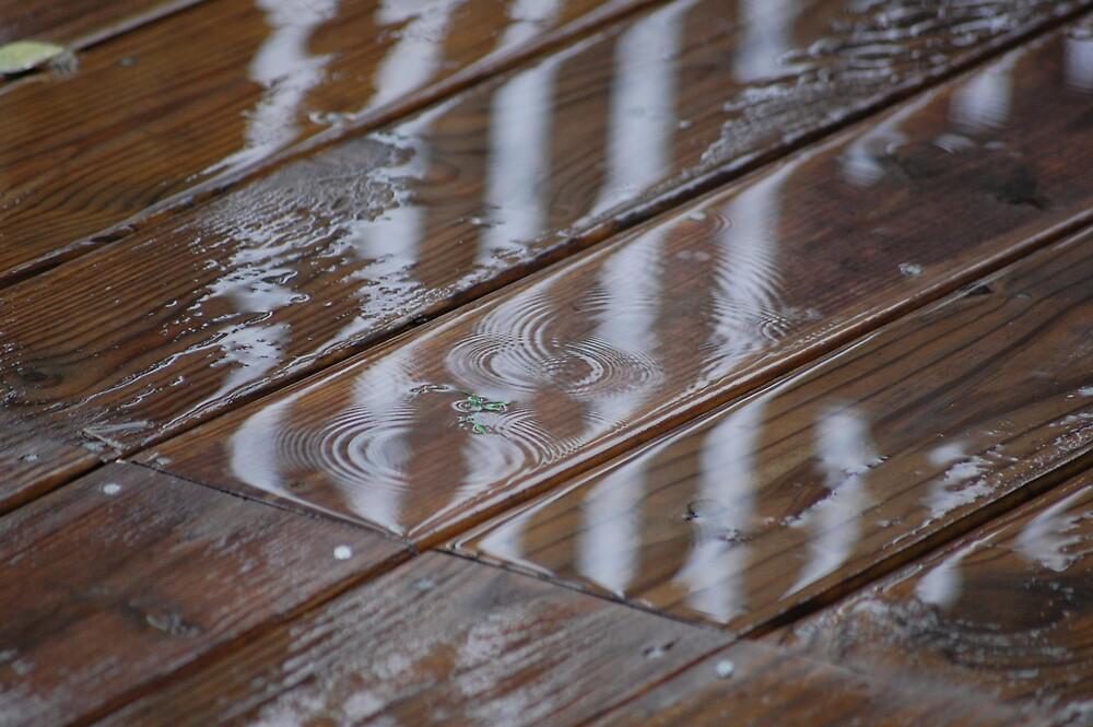 Last Summer Droplets by MaxxMonde