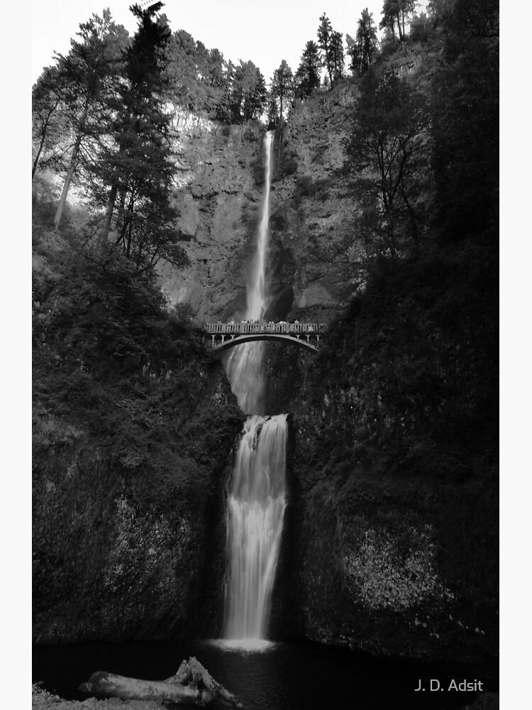 Falling for Portland by adsitprojectpro