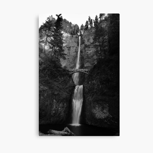 Falling for Portland Canvas Print
