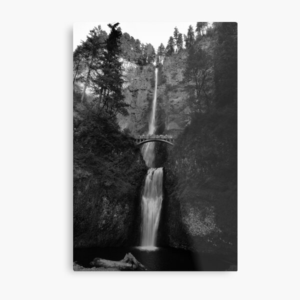 Falling for Portland Metal Print