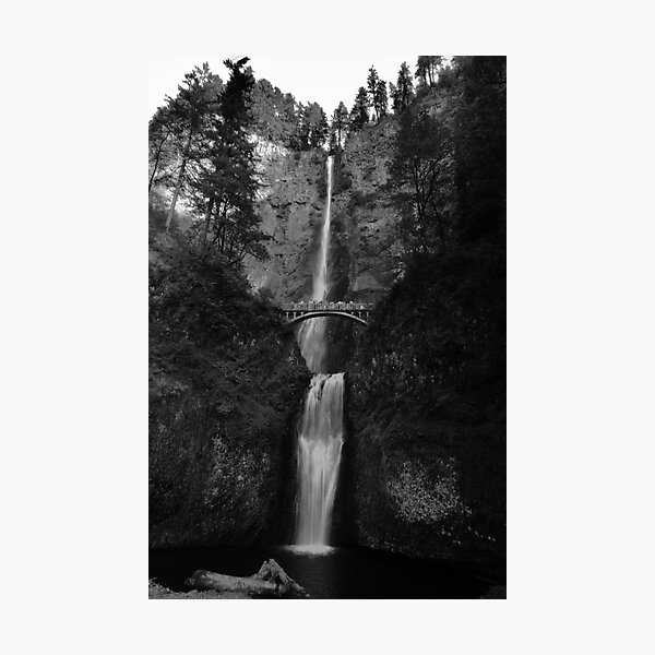 Falling for Portland Photographic Print