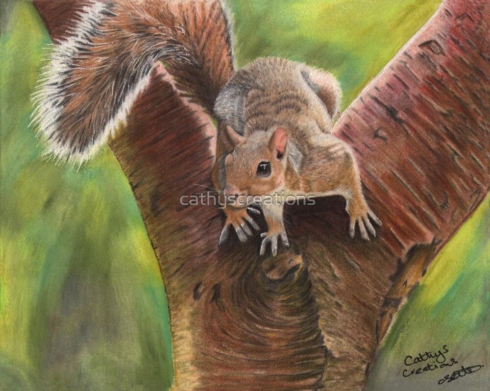 Squirrel in a tree by cathyscreations