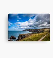 Pembrokeshire Coastal Path Canvas Print