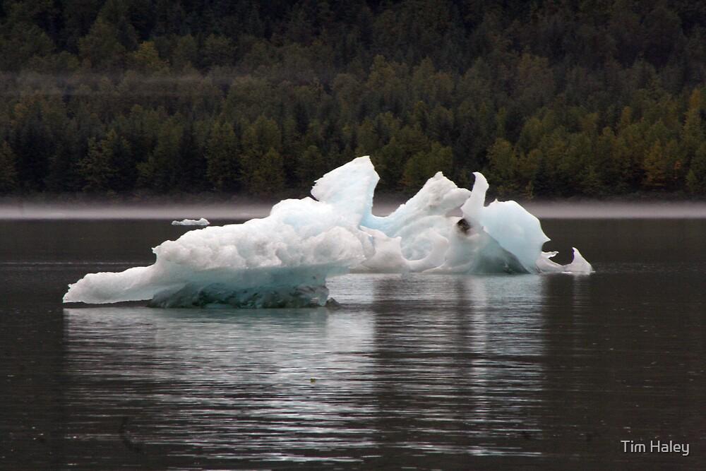 Ice by Tim Haley