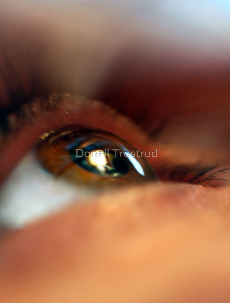 Eye See by Donell Trostrud