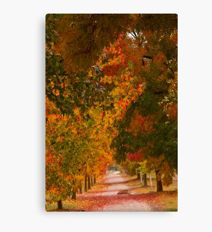 Bright Path Canvas Print