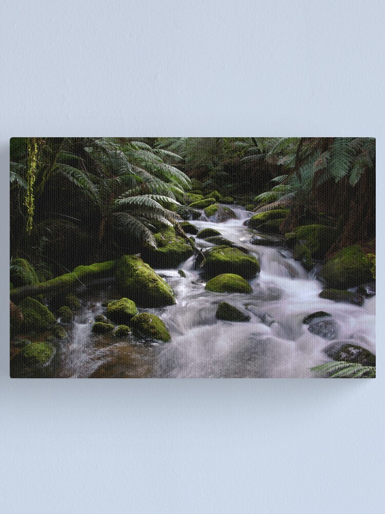 Alternate view of Taggerty River Canvas Print
