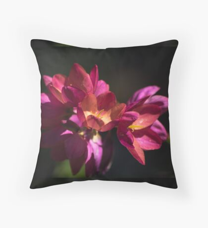 Flowers of Red and Pink Floor Pillow