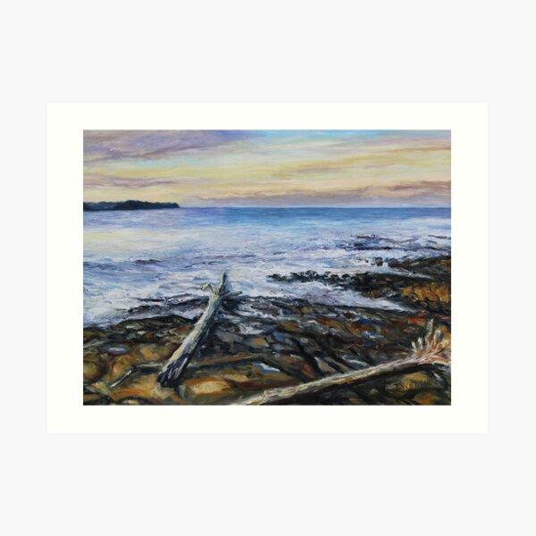 Winter Late Afternoon Georgina Point Mayne Island BC Art Print