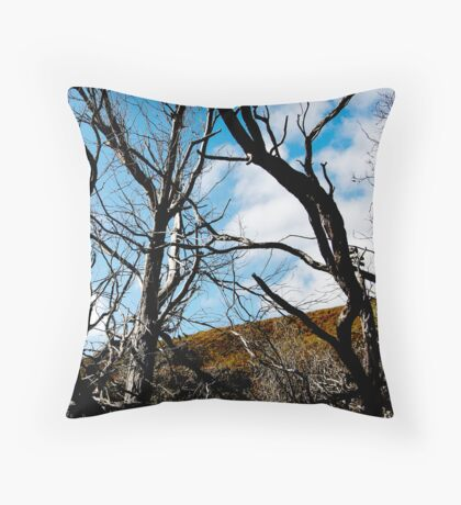 untitled #114 [wilson's promontory] Throw Pillow