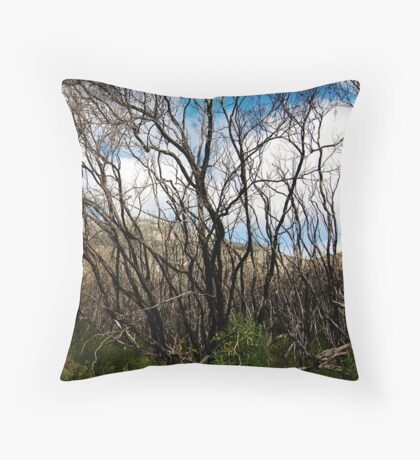 untitled #111 [wilson's promontory] Throw Pillow