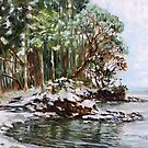 Oyster Bay Mayne Island BC with fresh snow by TerrillWelch