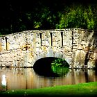 Bridge over Pond  by cjcphotography