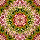 Hot Pink +Green Energy Mandala by webgrrl
