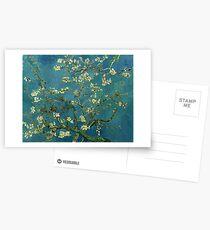 Van Gogh Almond Blossoms Postcards