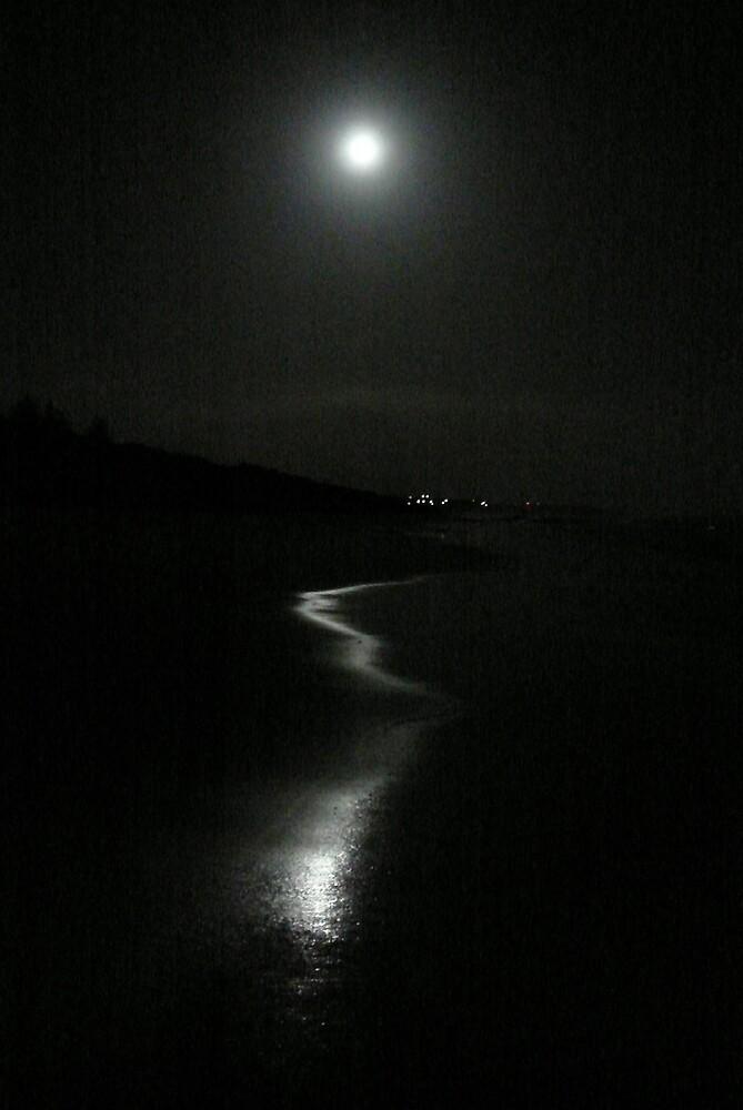 Catch a moonbeam by Shelley Karutz