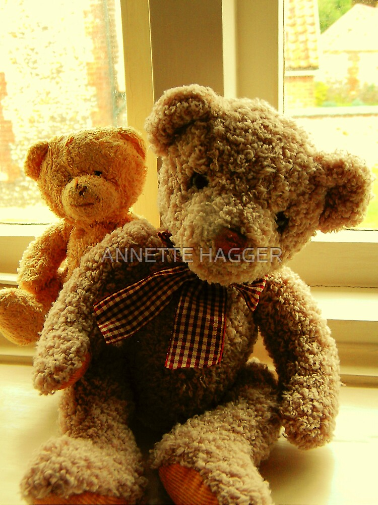 LITTLE TED AND BIG TED by ANNETTE HAGGER