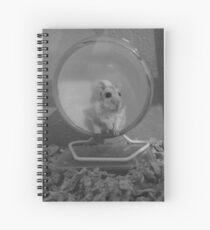 a hamster named eggs Spiral Notebook