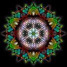 Fruity Glow Geometrica by webgrrl