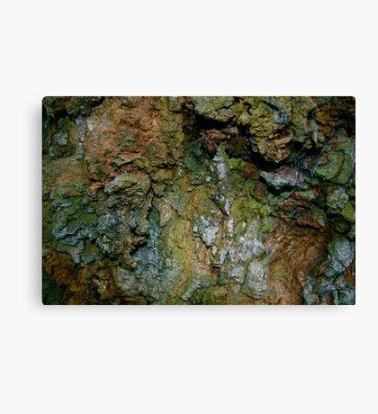 Surface Canvas Print