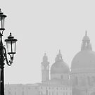 Venice - Sea Mist by Samantha Higgs
