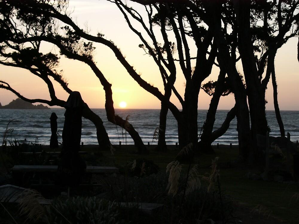 Sunset by katurahstevens