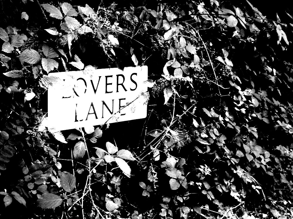 Lovers Lane by katurahstevens
