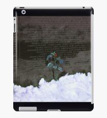 Vietnam Veterans Memorial 3 iPad Case/Skin
