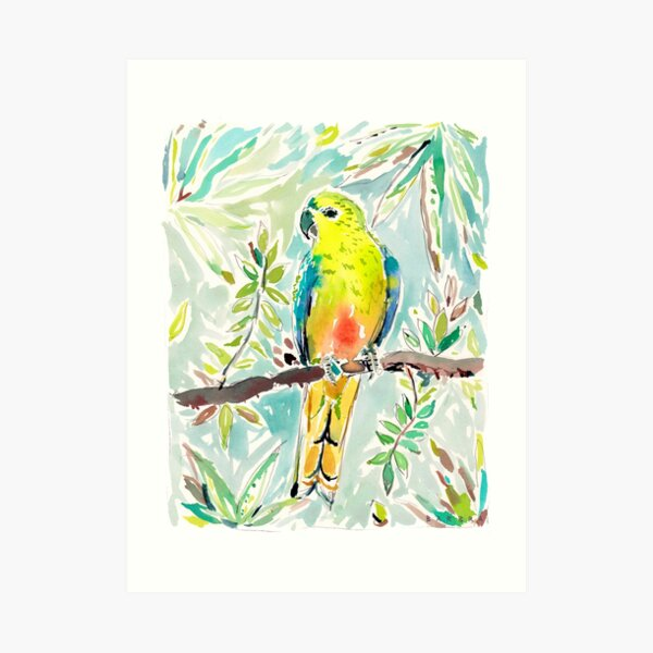 Cutie the Orange-bellied Parrot by Barbra Ignatiev Art Print