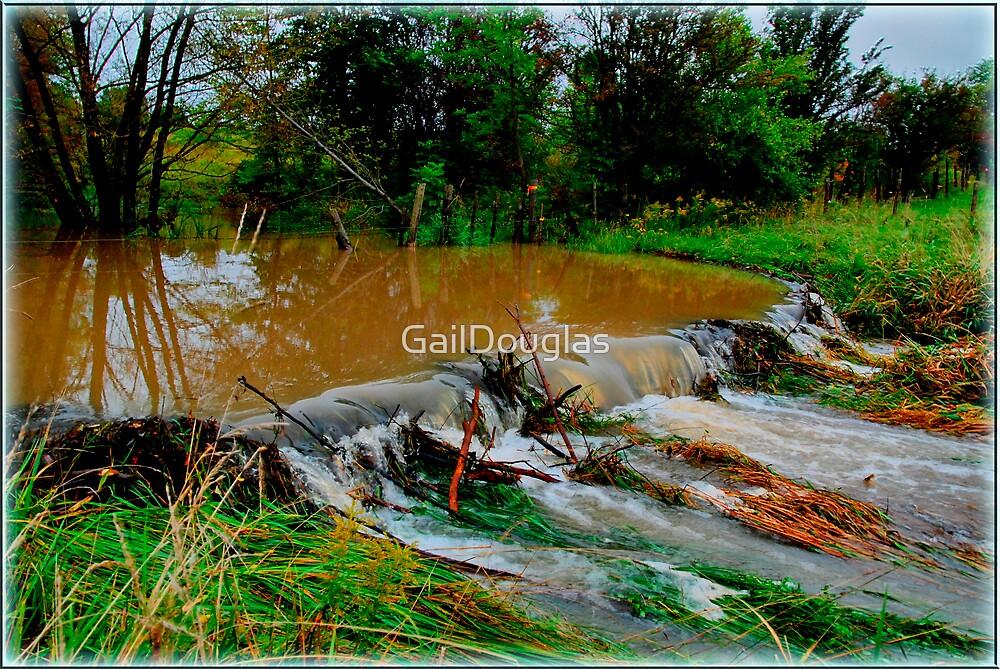 Over Flow by GailDouglas