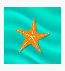 Plenty of Cushion Starfish on a  Ocean Floor. Caribbean Starfish on Azure  Background Photographic Print