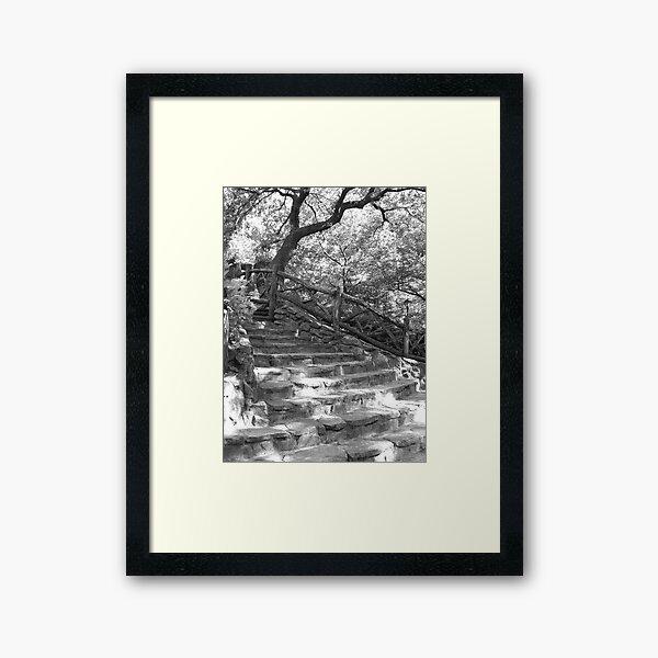 Stone Steps - Shakespeare Garden - Central Park, NYC Framed Art Print