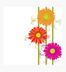 Gegbera flowers colorful decorative textile Photographic Print