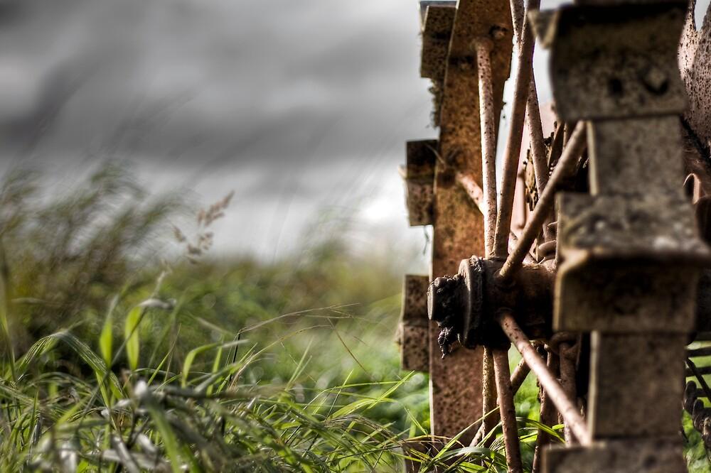 Crop Circles by Kevin  Kroeker