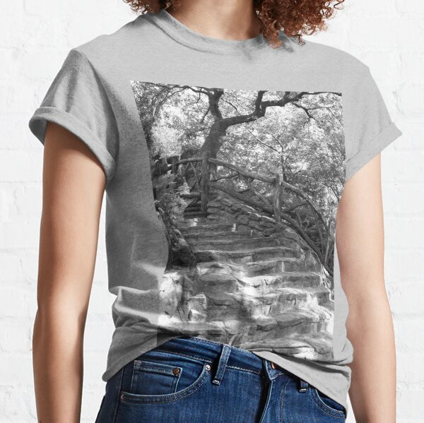 Stone Steps - Shakespeare Garden - Central Park, NYC Classic T-Shirt