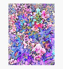 Pink and Blue Fusion Photographic Print