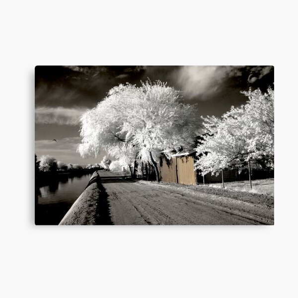 The Haunted Passage 2 Canvas Print