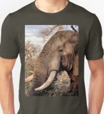 Elephant Lovers Art Gifts Unisex T-Shirt