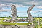 the Kelpies , Helix Park, Grangemouth by David Rankin