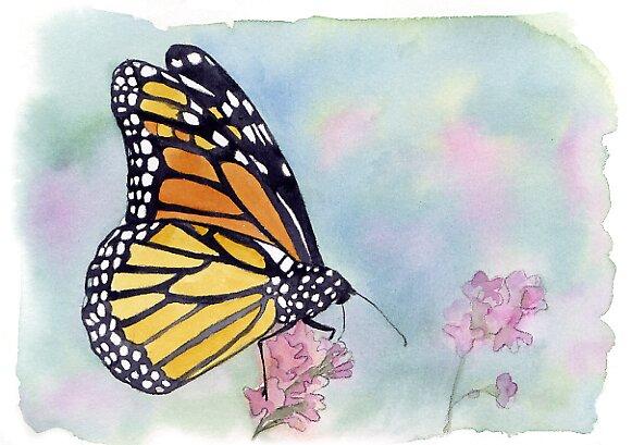 butterfly by Nina Rycroft