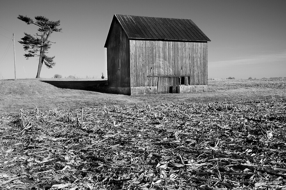 Rural Indiana #32 by Shaun McDougle