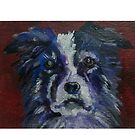 Border Collie Dog by carolineskinner