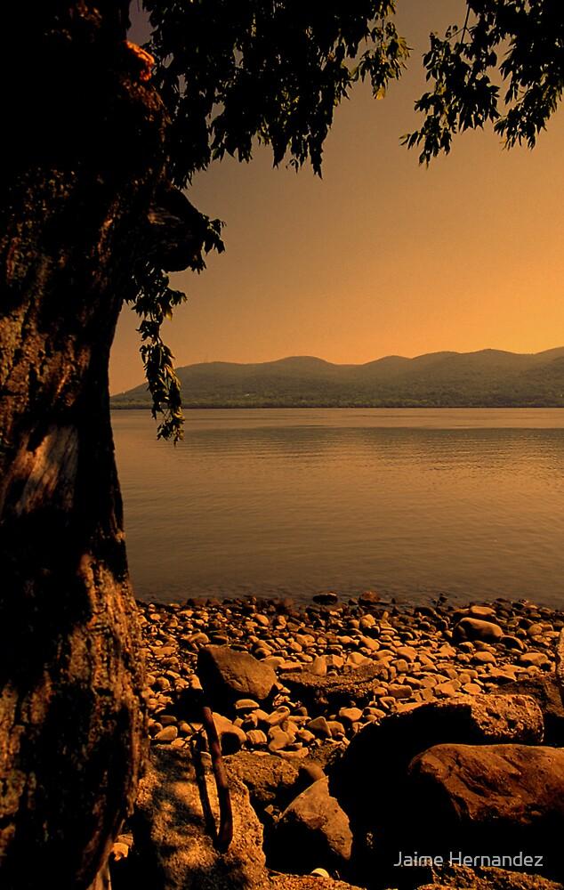 """The Hudson River"" by Jaime Hernandez"