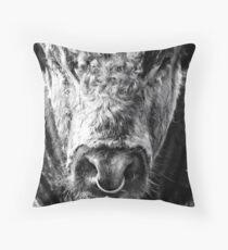English Longhorn Bull Throw Pillow