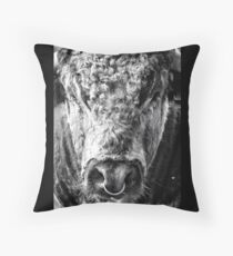 English Longhorn Bull Floor Pillow