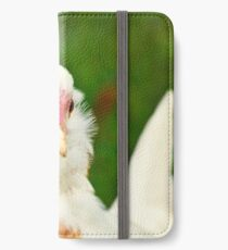 White Barbu d'Uccle bantam chicken iPhone Wallet/Case/Skin