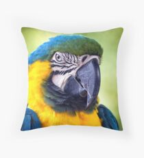Macaw Parrot Throw Pillow