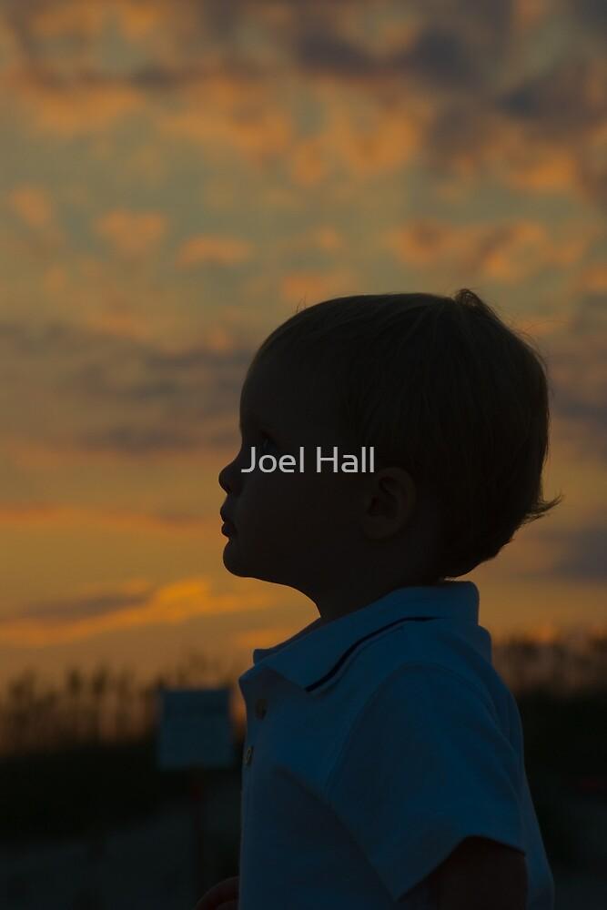 Twilight by Joel Hall