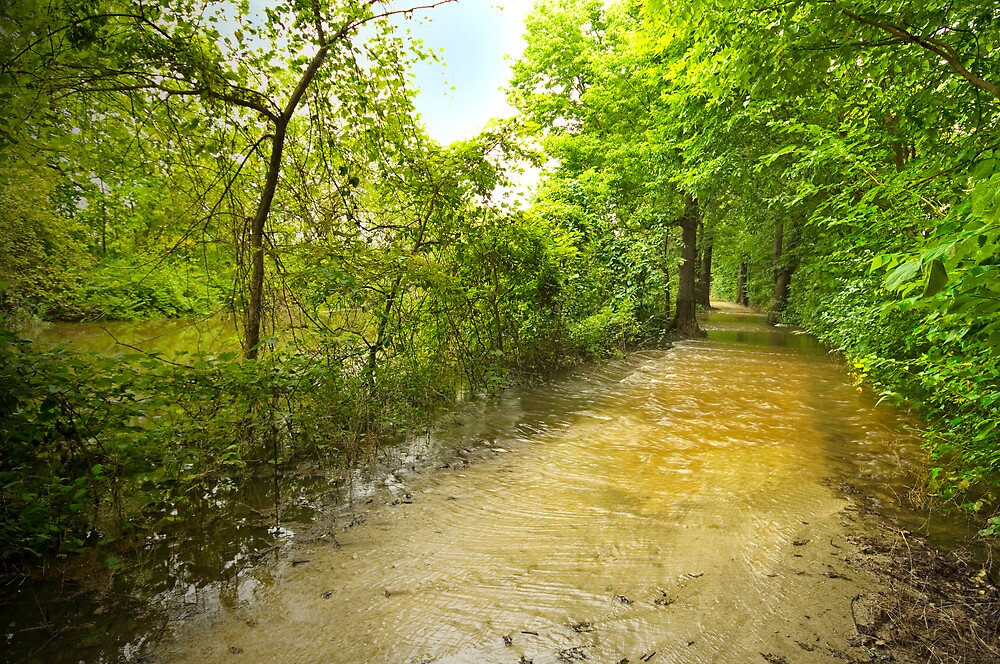 Flooding the Trail by Michael Wolf