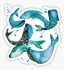 Fins and Flippers Sticker